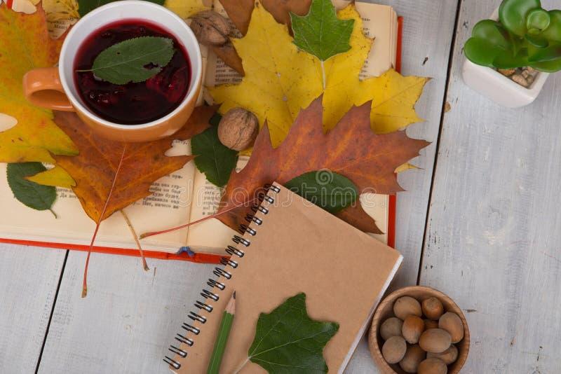Concept die de herfst - kop thee met de herfst kleurrijke leav rusten royalty-vrije stock fotografie