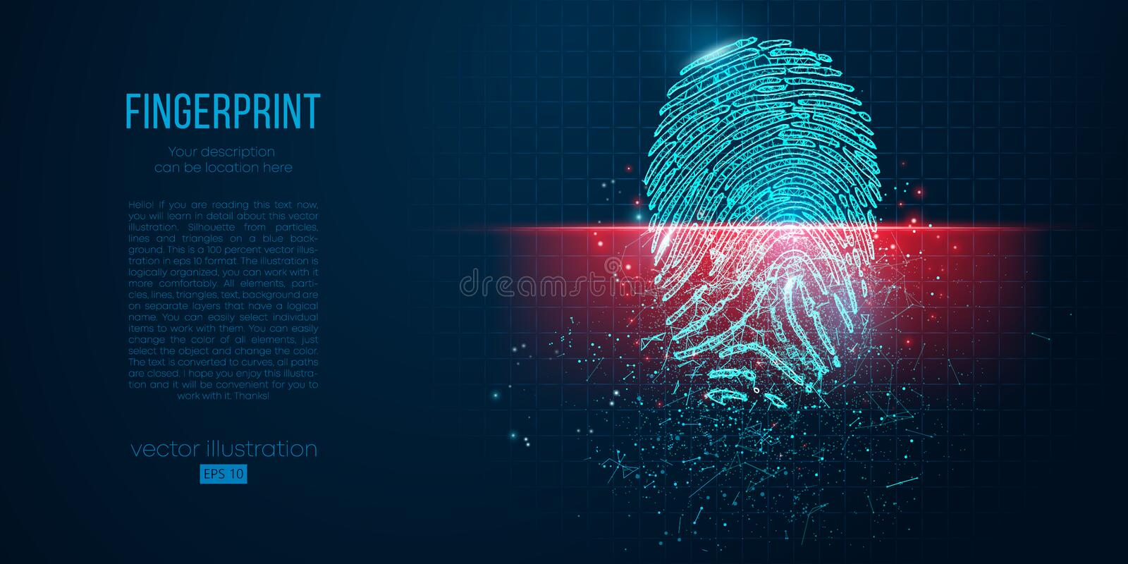 Concept of digital security, electronic fingerprint on scanning screen. Low poly wire outline geometric vector. Illustration. Particles, lines and triangles on vector illustration