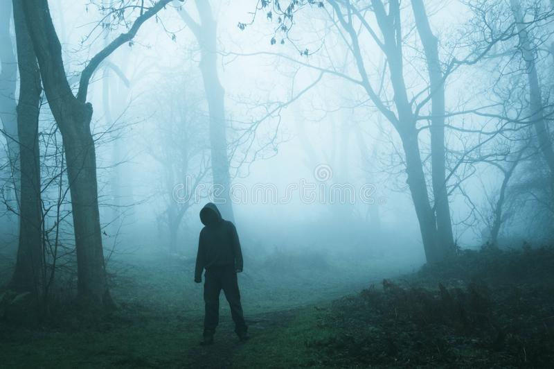 A concept edit of an eerie spooky figure without a face, standing in a foggy winters forest royalty free stock images