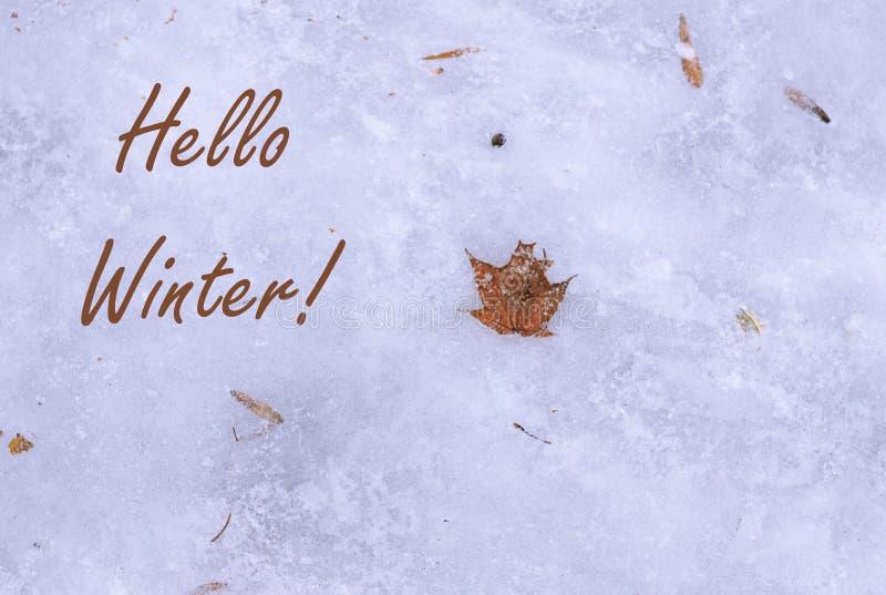 Concept eerste vorst en sneeuw in openlucht, de wintervakantie De natuurlijke vlakte legt, hoogste mening Hello-de winter! Oranje royalty-vrije stock afbeelding