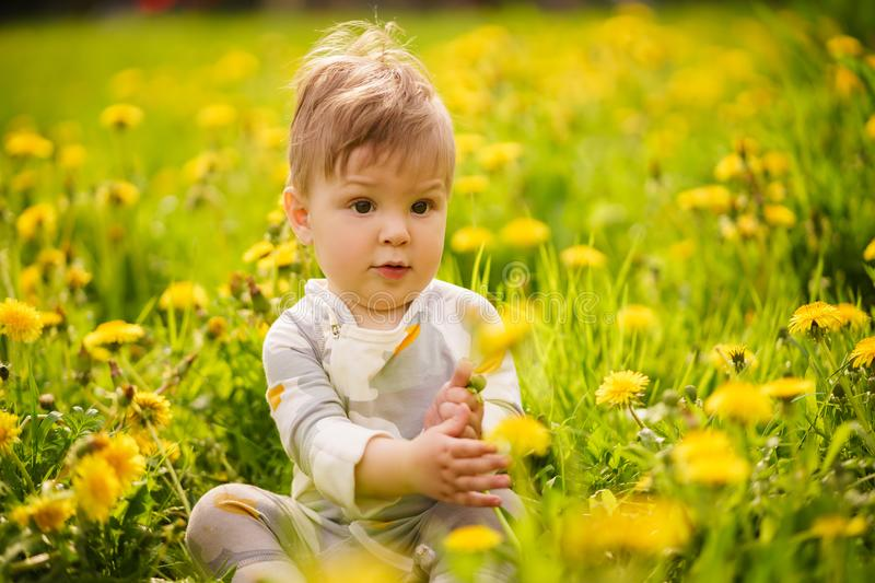 Portrait of adorable baby playing outdoor in the sunny dandelions field. Concept: family values. Portrait of adorable innocent funny brown-eyed baby playing royalty free stock images