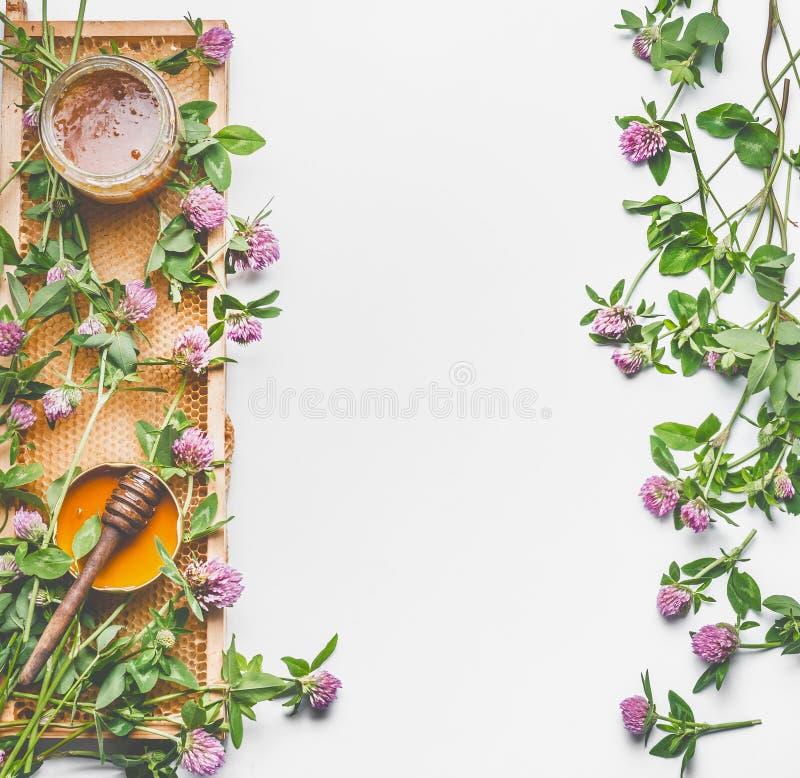 Concept frais de miel d'été Pot en verre avec du miel, le peigne de miel et le plongeur sur le fond blanc avec les fleurs sauvage photographie stock libre de droits