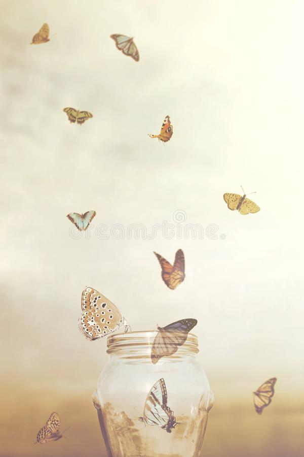 Freedom concept for a group of prisoners butterflies in a vase royalty free stock photography
