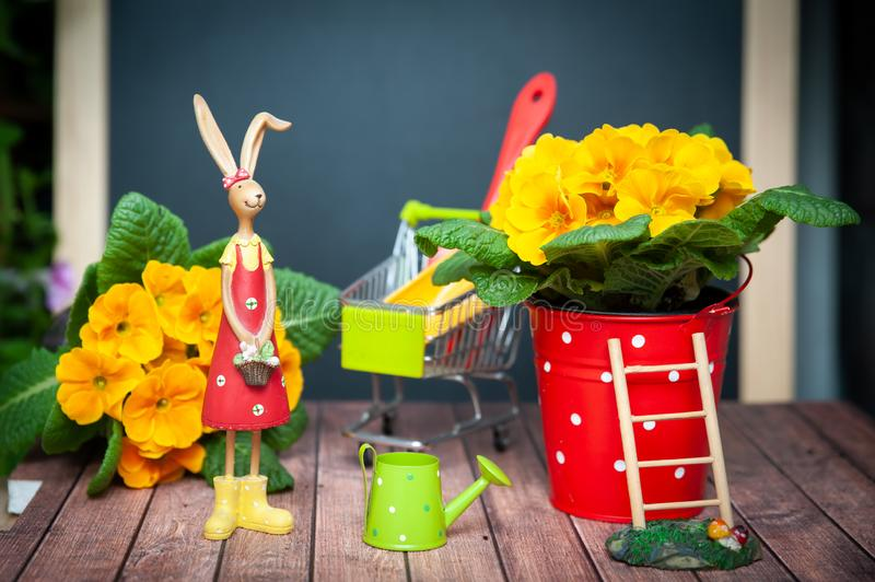 Concept of gardening Summer and spring, harmony and beauty. Flowers Primula yellow and garden tools..Bright photo in cartoon royalty free stock image