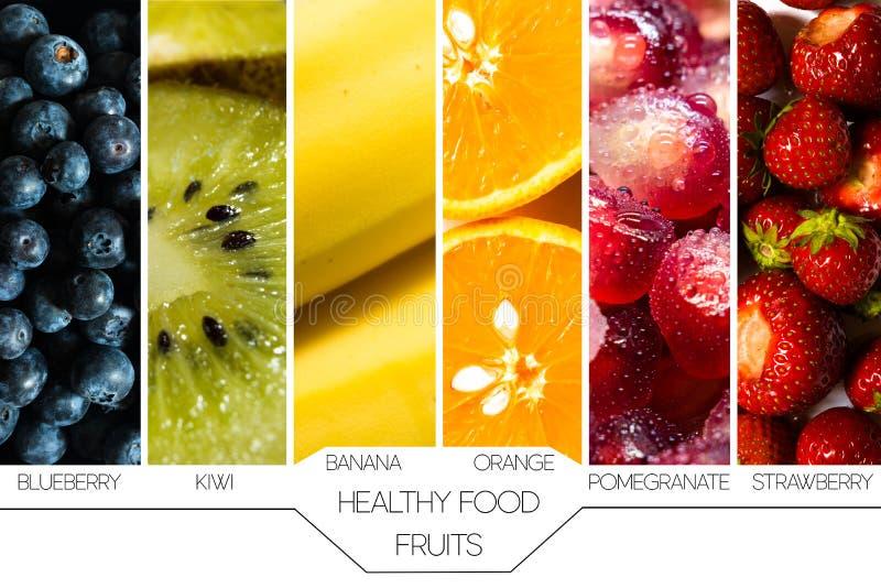 Concept gezond voedsel Seizoengebonden vruchten die binnen zij aan zij op witte achtergrond met namen worden vertegenwoordigd en stock afbeeldingen