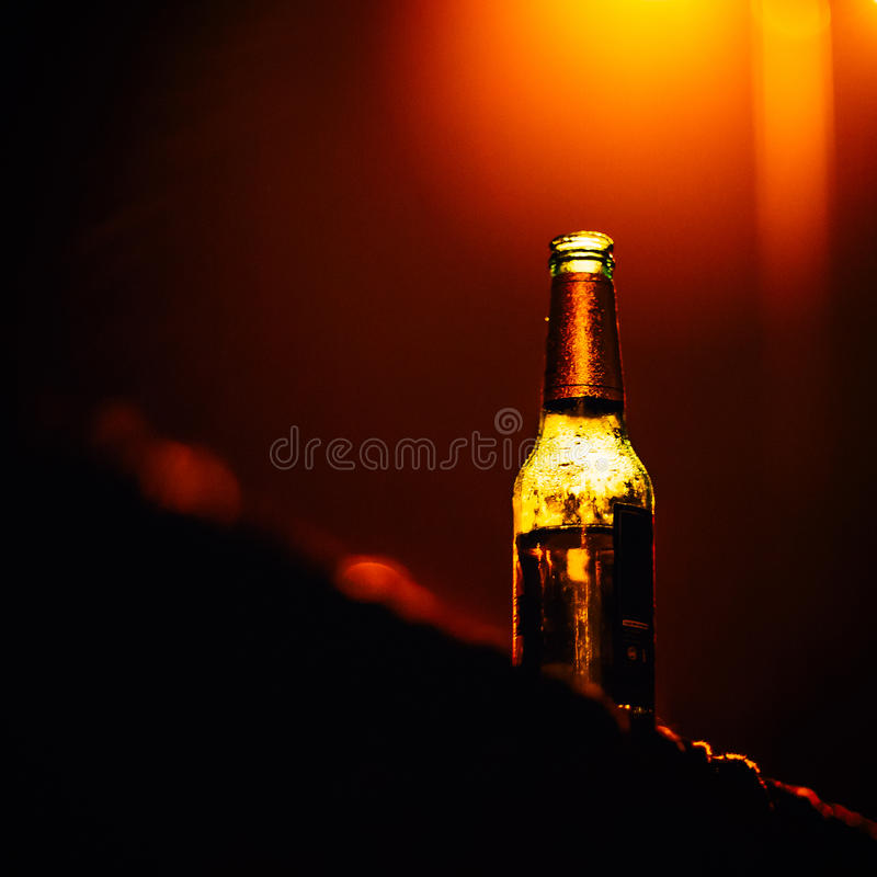 Concept glacé de bar de bière image libre de droits