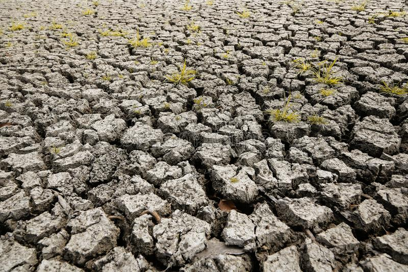 Concept of global warming, hot and dry climate,change climate,land for perennial crops stock photography