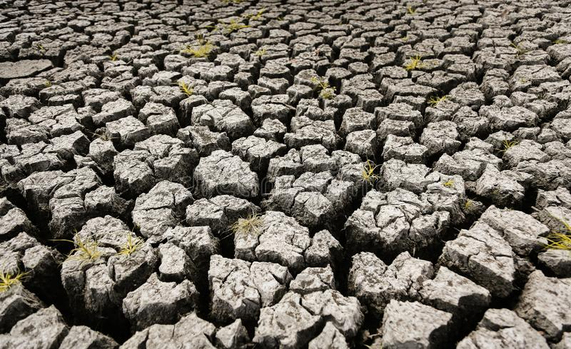 Concept of global warming, hot and dry climate,change climate,land for perennial crops stock image