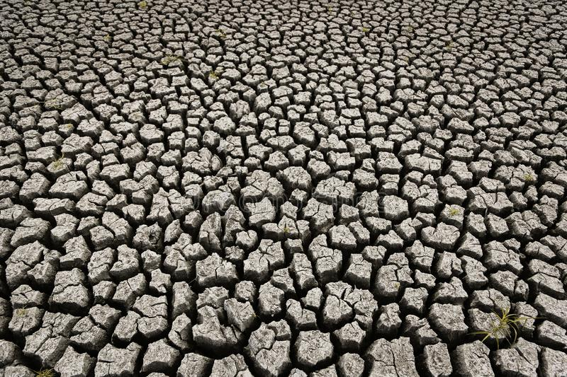 Concept of global warming, hot and dry climate,change climate,land for perennial crops stock photo
