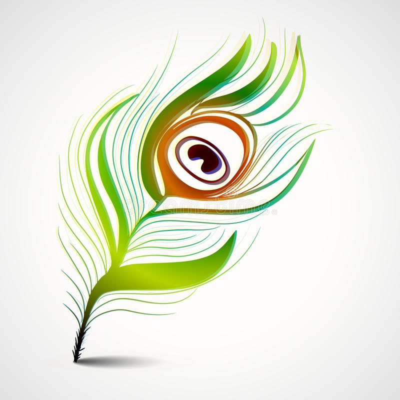 Concept of glossy peacock feather design. royalty free illustration