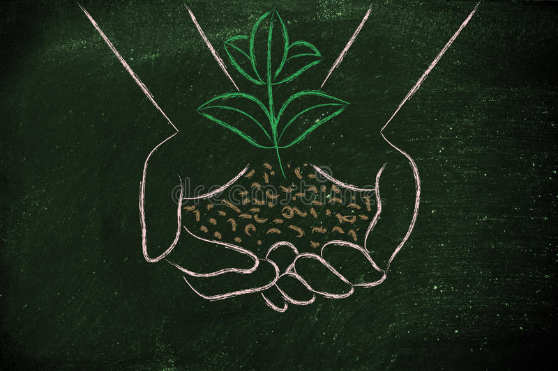 Concept of green economy, hands holding new plant royalty free illustration