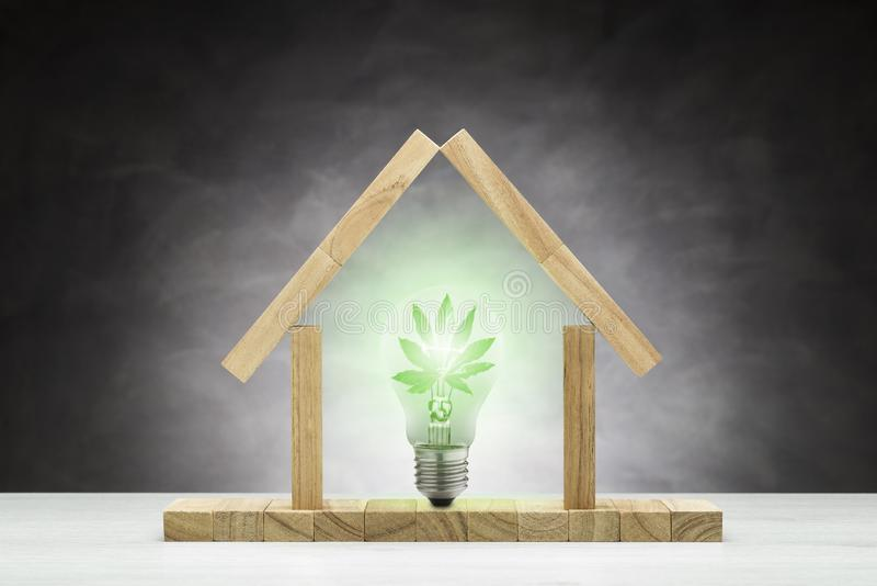Concept of green house stock image