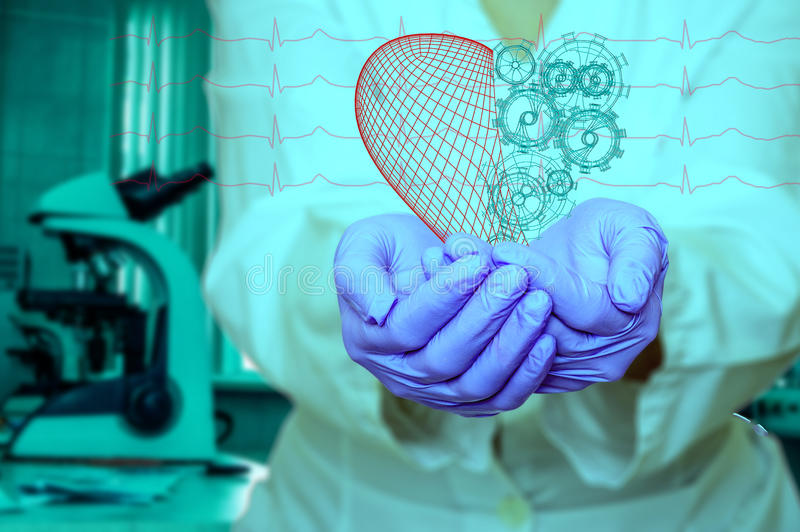Concept of health and medicine - female doctor holding a red heart with gears with ecg lines. Concept of health and medicine female doctor holding a red heart stock photography