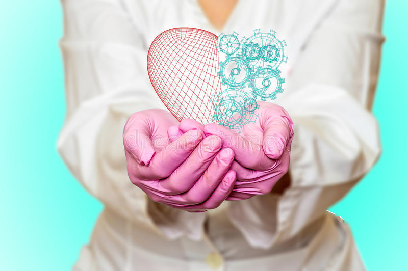 Concept of health and medicine - female doctor holding a red heart with gears with ecg lines. Concept of health and medicine female doctor holding a red heart royalty free stock photo