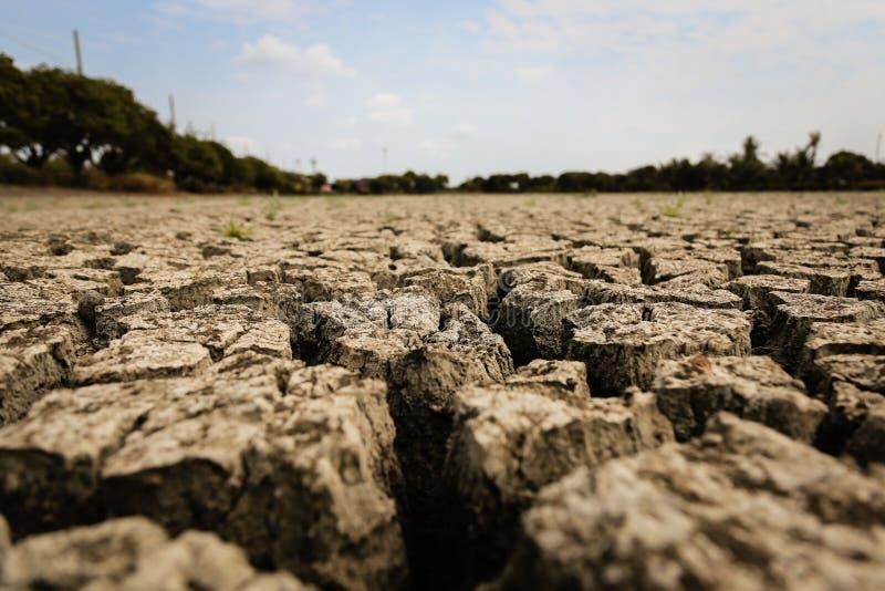 Concept het globale verwarmen, heet en droog klimaat, veranderingsklimaat, land voor eeuwigdurende gewassen stock illustratie