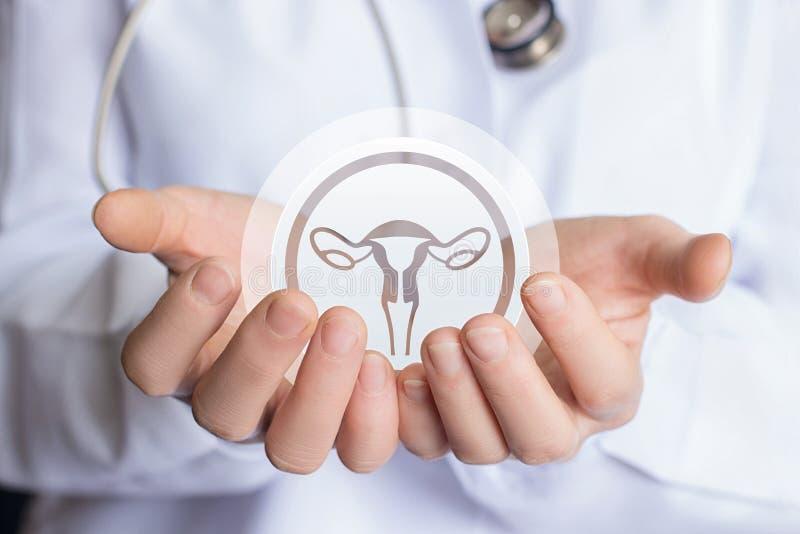 Concept het steunen van de gezondheid van de baarmoeder van de vrouw royalty-vrije stock afbeelding