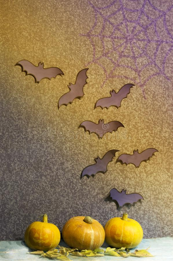 The concept of the holiday of Halloween. Pumpkin at night. Scary bats. stock photography