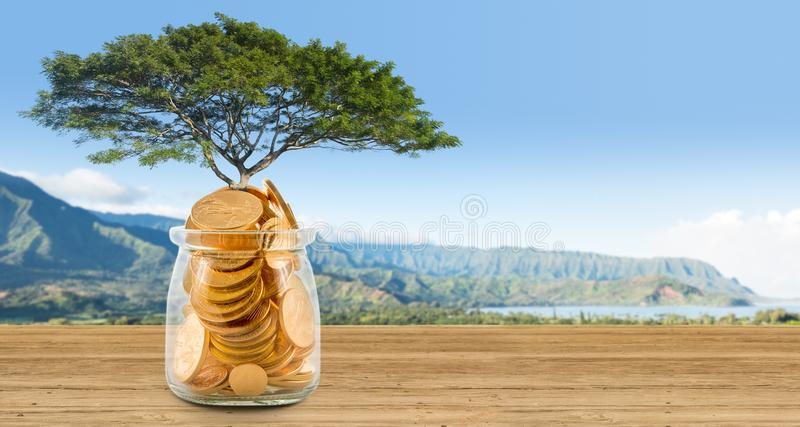 Concept image of wealth growing on trees out of gold coins stock photos