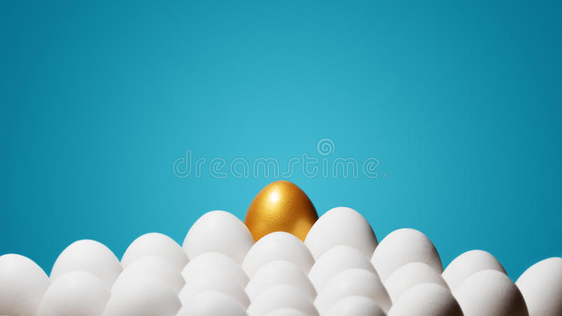 Concept of individuality, exclusivity, better choice. One golden egg among white eggs on blue background stock image