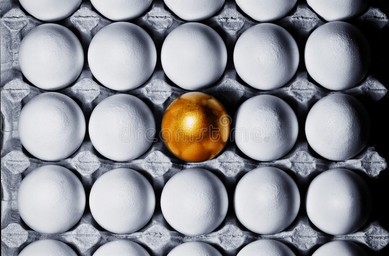 Concept of individuality, exclusivity, better choice. One golden egg among white eggs in carton tray, top view stock photo