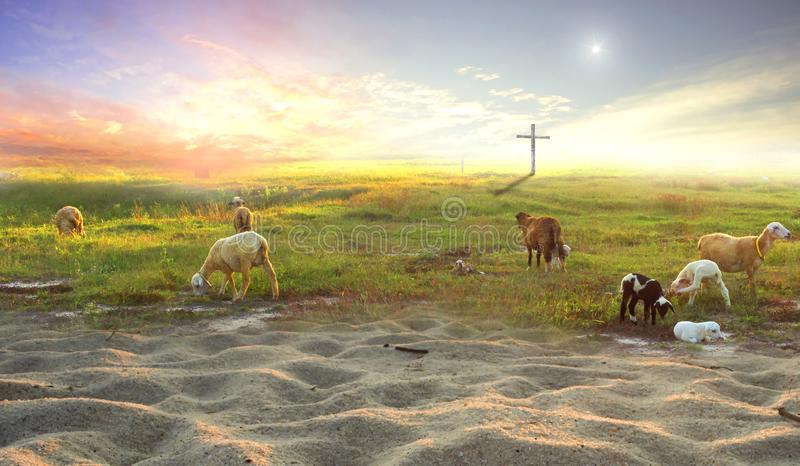 The cross of Jesus Christ on the flock of meadows royalty free stock photo