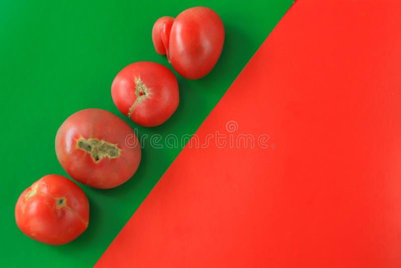 Concept laid de nourriture, tomates déformées sur le fond rouge, l'espace de copie, image créative de duotone image libre de droits