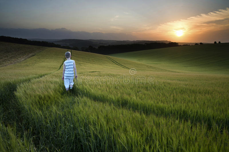 Concept landscape young boy walking through field at sunset in S royalty free stock image