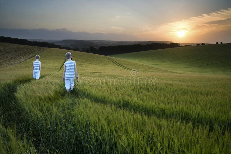 Concept landscape young boys walking through field at sunset in royalty free stock photos