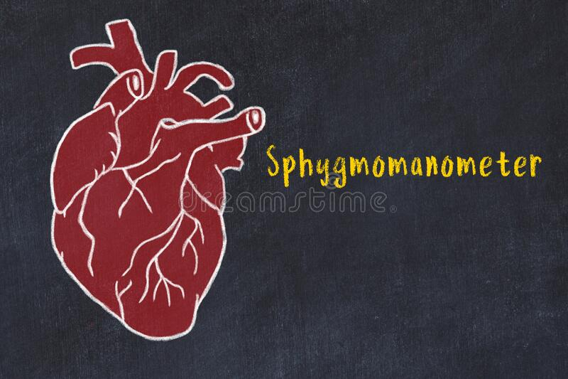 Concept of learning cardiovascular system. Chalk drawing of human heart and inscription Sphygmomanometer. Chalk drawing of a human heart on black chalkboard and vector illustration