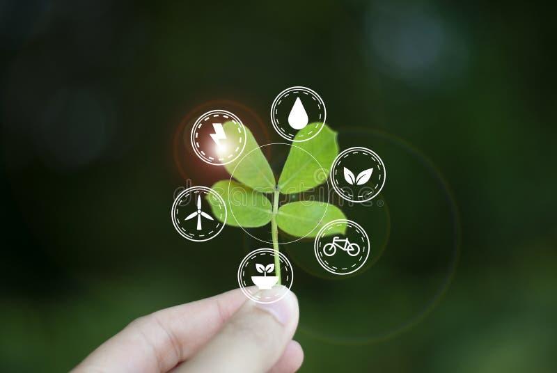 Concept liefde, ecologiewereld aan duurzaamheid stock foto's