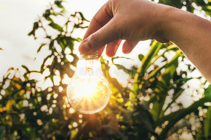 Concept light bulb with sunset and saving power energy. In nature stock photography