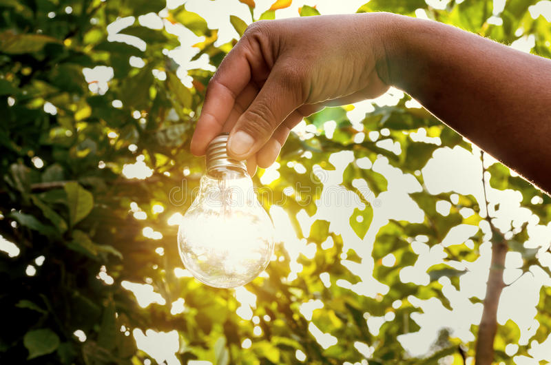 Concept light bulb with sunset and saving power energy. In nature stock photo