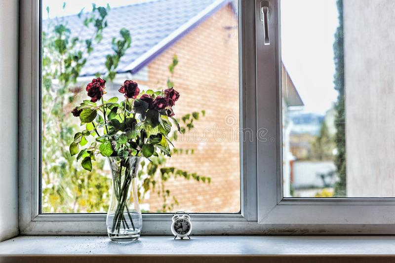 Concept: Love, St. Valentine`s Day, Birthday, anniversary of the wedding. A bouquet of beautiful roses on the windowsill in the h royalty free stock photos