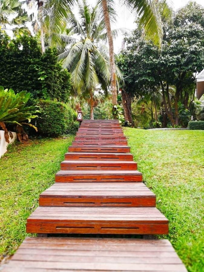 Concept mensen die met geluk doorgaan De houten ladder royalty-vrije stock afbeeldingen