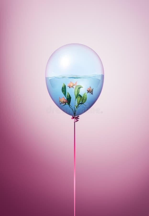 Concept minimal de ballon avec la petite natation de poissons d'or à l'intérieur Poisson rouge à l'intérieur d'idée de ballon sur illustration stock