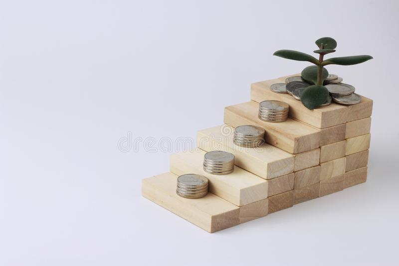 Ladder of wooden bricks on which the coins lie, Ukrainian hryvnia. Probably a money tree is growing as a symbol of wealth. The concept of money growth, profit royalty free stock image