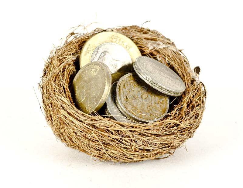 Concept of a money in a nest stock images