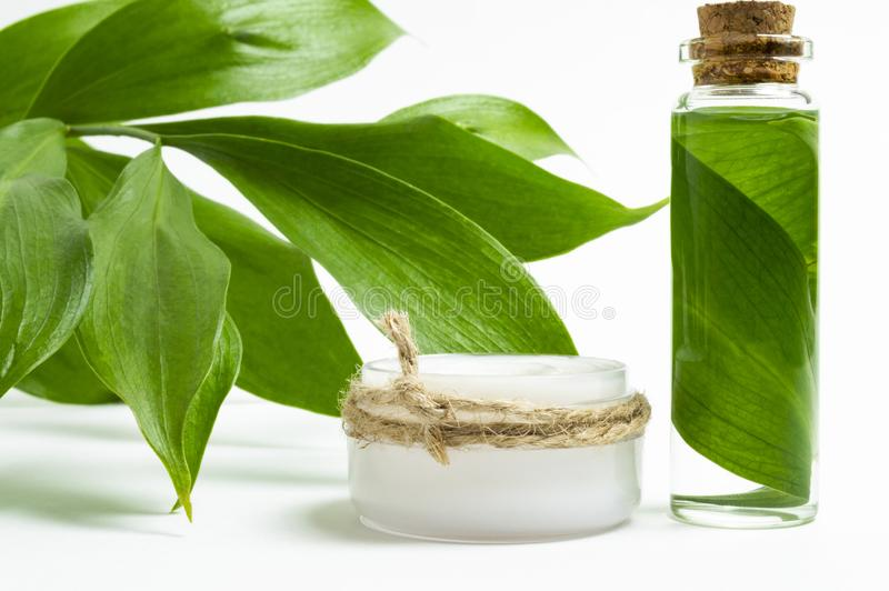 Natural cosmetics concept: cosmetic jar with cream and a bottle with leaf, branch with green leaves. White background. stock photography