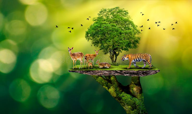 Concept Nature reserve conserve Wildlife reserve tiger Deer Global warming Food Loaf Ecology Human hands protecting the wild and w stock illustration