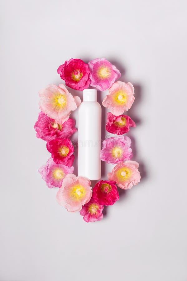 Concept naturel organique de cosmétiques Bouteille de shampooing et mauve de fleurs image libre de droits
