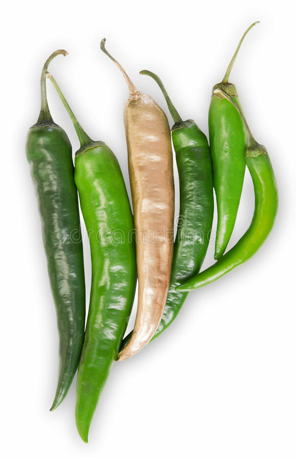 Concept od difference and success.Golden pepper outstands green. royalty free stock images