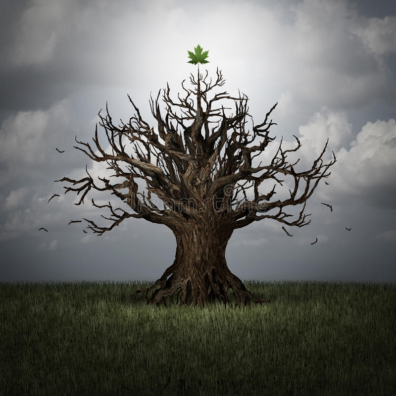 Concept Of Optimism. As a tree in crisis with no leaves and one green leaf surviving as a business or psychological symbol of persistence and determination to royalty free illustration