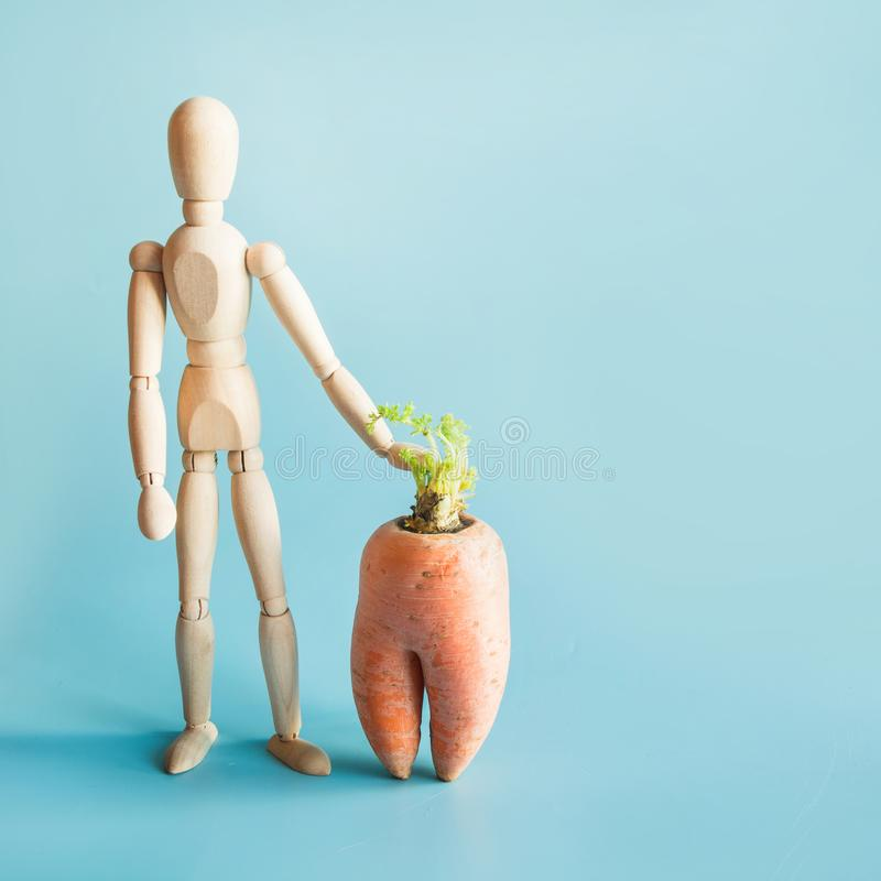 Wooden doll and carrot on blue. Concept of organic and natural vegetables. Gardening. Concept of organic gardening and cultivation of natural vegetables. Wooden royalty free stock images