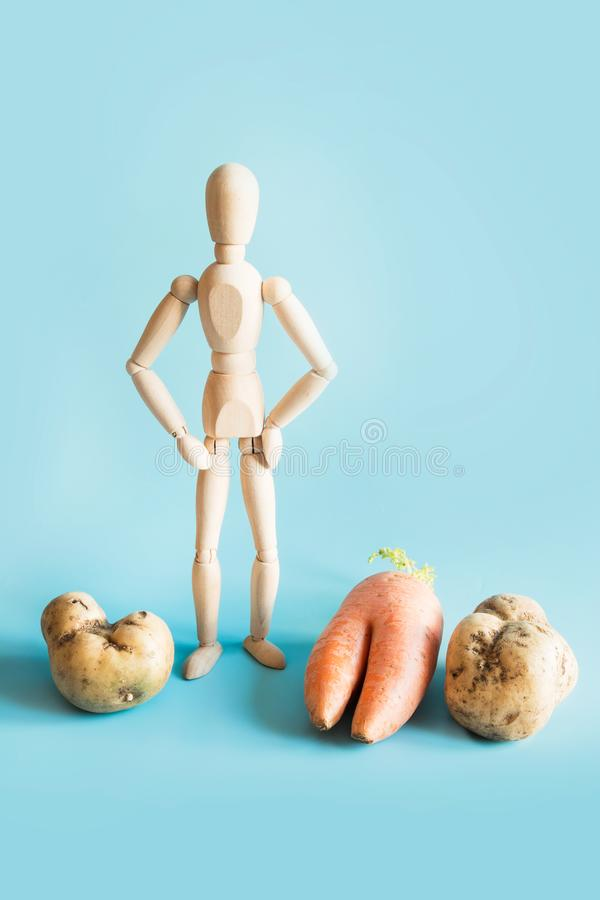 Concept of organic gardening and cultivation of natural vegetables. Wooden doll and large vegetables, potatoes and. Carrots stock photo