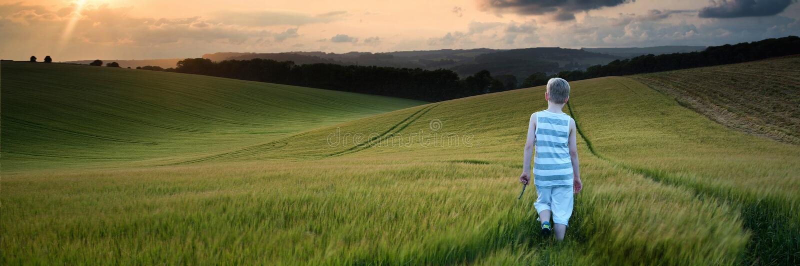 Concept panorama landscape young boy walking through field at sunset in Summer royalty free stock photo