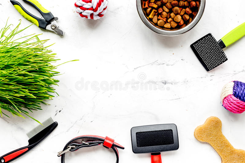 Concept pet care and training on stone background top view stock photo