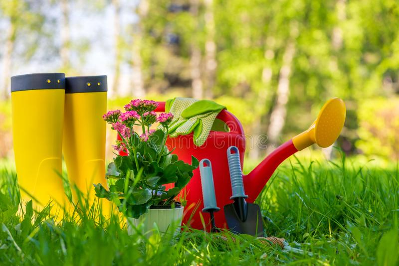 Concept photo of gardening work, tools and gardener`s protective. Clothing stock photos