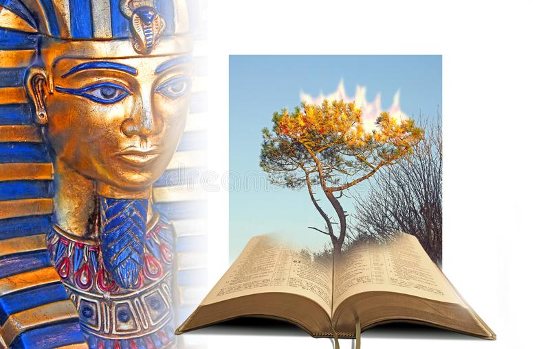 Miracles of god burning bush open bible pharaoh red sea crossing. Concept photo of open bible telling the story of the burning bush and pharaoh red sea crossing royalty free stock image