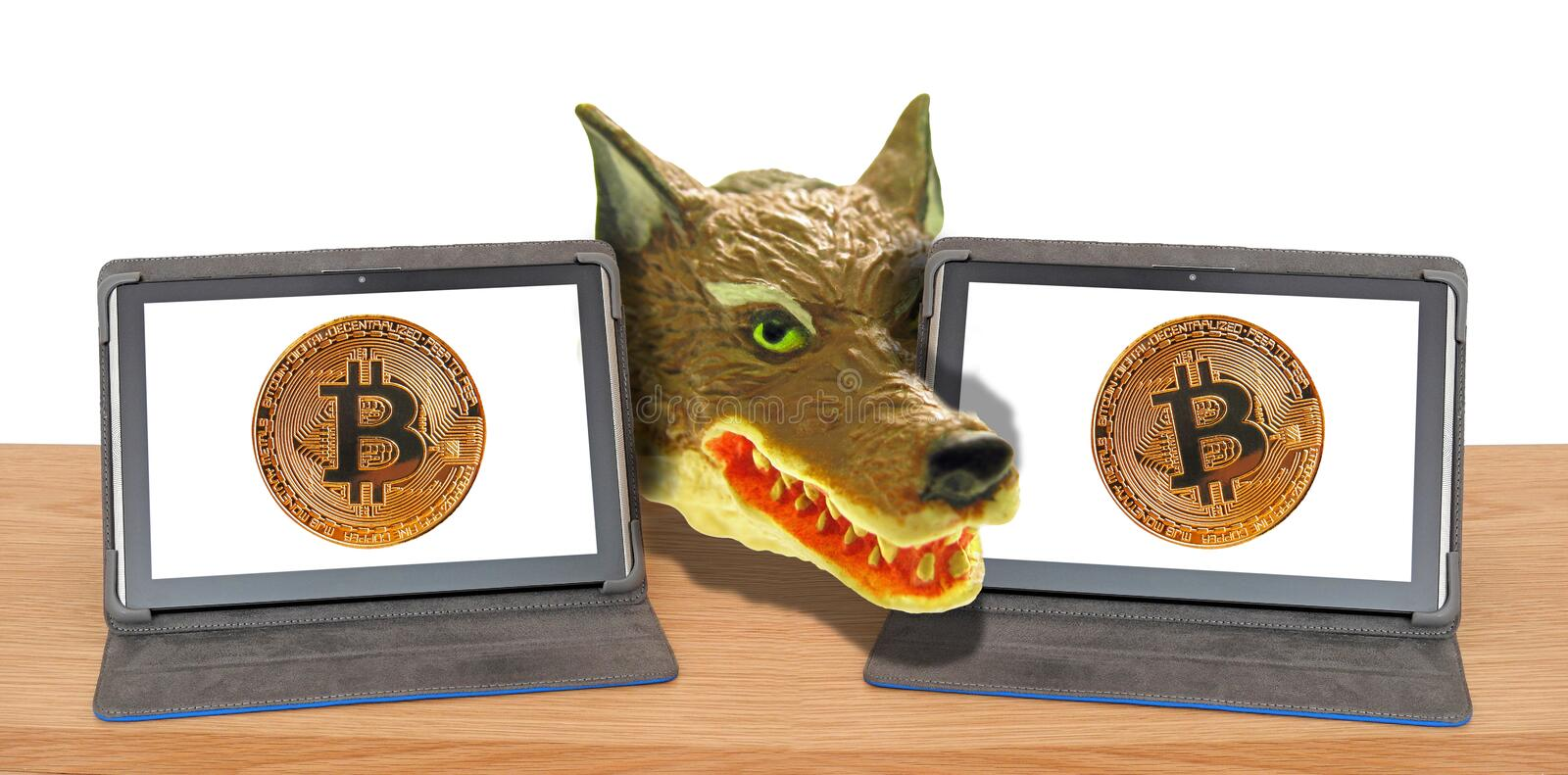 Online internet fraudster computer hack hacking malware trojan ransomware scam hijack. Concept photo of wolf head hiding between two computer tablets bitcoin vector illustration