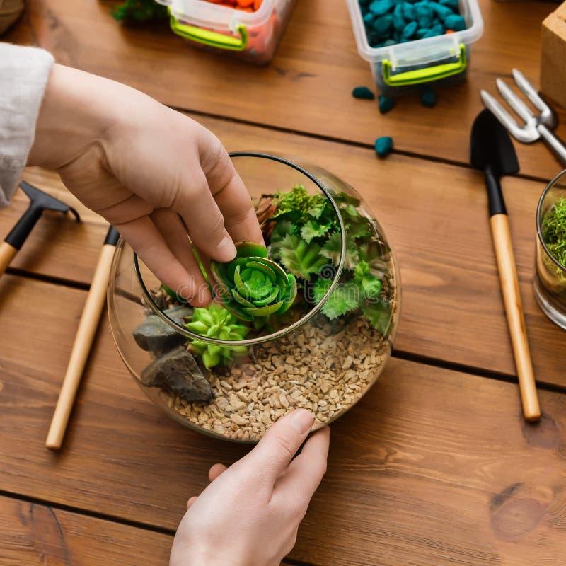 Concept principal de jardinage à la maison de classe photographie stock libre de droits
